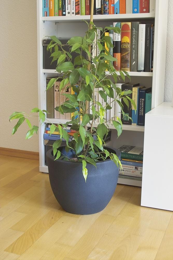 blumentopf blumenk bel topf blumen garten wohnen pflanzen blumenkasten padua ebay. Black Bedroom Furniture Sets. Home Design Ideas